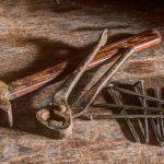 tool-1314070_1920